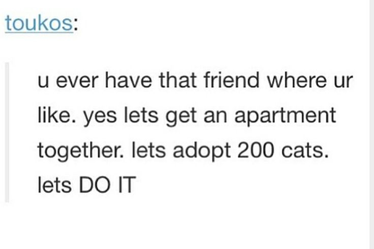 Me and my best friend said if we go to college in the same areas we will do that but you know 4 cats instead