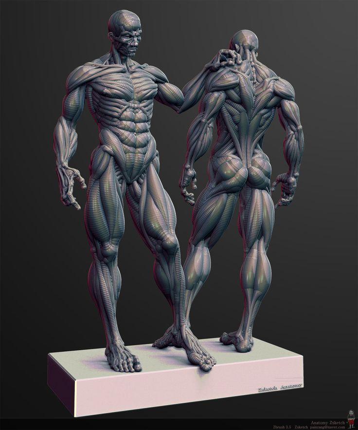 anatomy_pose.jpg