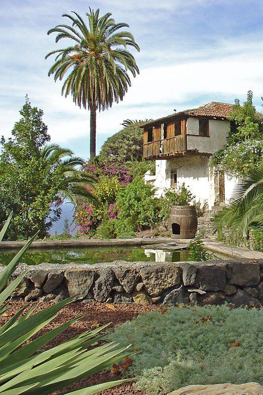 Icod de los Vinos  Tenerife Spain