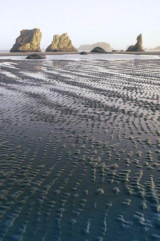 Bandon Beach State Park, Oregon }-> repinned by www.BlickeDeeler.de