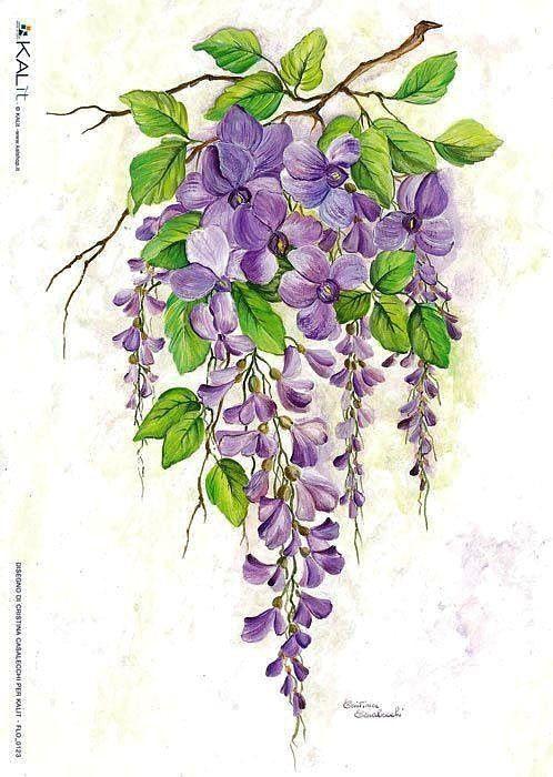Gallery.ru / Фото #35 - цветочковое продолжение 2 - ninmix