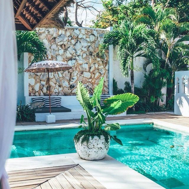 A Backyard pool.  Planet Blue - turquoise pool ~ love the decorative wall and potted palms