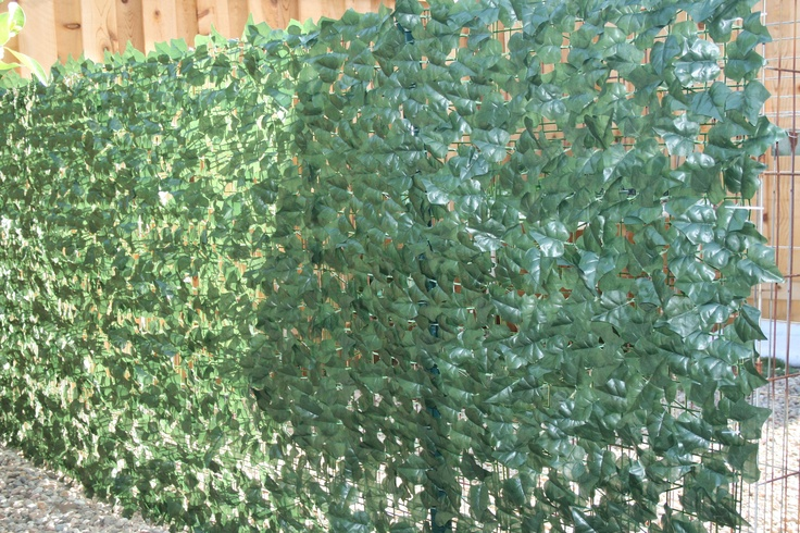 Single Sided Ivy Fence Roll 40 X 120 Artificial Plants