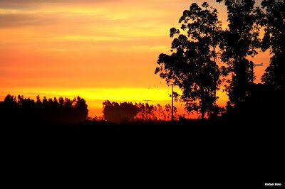 Olhares do avesso: Todos Um nada mais é nu e cru quando se alastra a fogueira queimando as beiras inteiras Nothing else is naked and raw when the fire pit burns the entire borders http://olharesdoavesso.blogspot.com.br/2017/05/todos-um.html #poesia #poetry #poesie #poesía #поэзия الشعر# لشعر# #puisi #filíocht #poëzie #shīgē #poíisi #thơ #kavita #şiir #uta #pantun #poeziya #gedigte #diktning #nothing #nada #mais #else #naked #nu #raw #cru #firepit #fogueira #burns #queimando #olharesdoavesso…