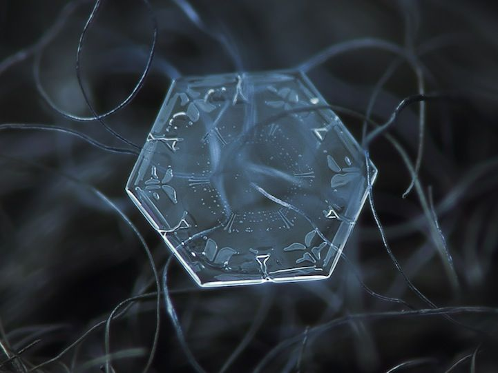 Stunning Macro Details of Uniquely Beautiful Snowflakes - My Modern Metropolis