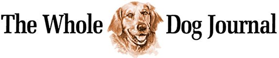 Alternatives to Canine Surgeries - Whole Dog Journal Article