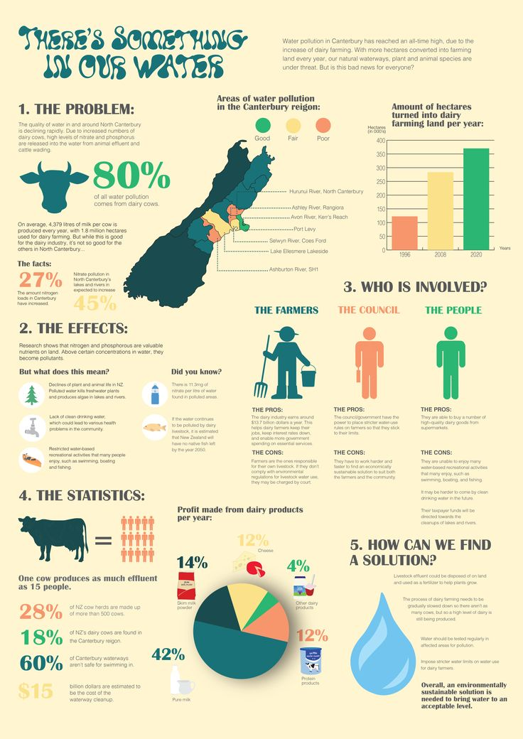 Infographic about the impact on agriculture on NZ's precious water system...