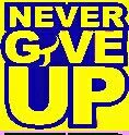 Wwe john Cena  Never give up