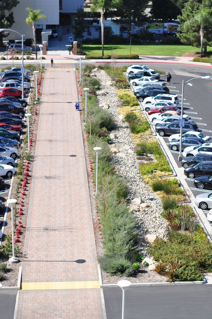 Another angle of the bioswale parking lot created by Lynn Capouya Landscape Architecture