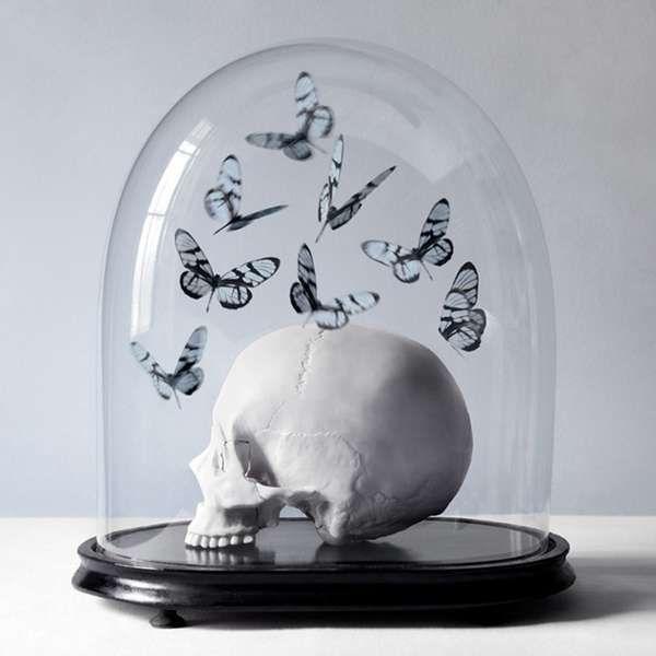 The Histoires Naturelles Series Revolves Around a Theme of Death #skulls #skullart
