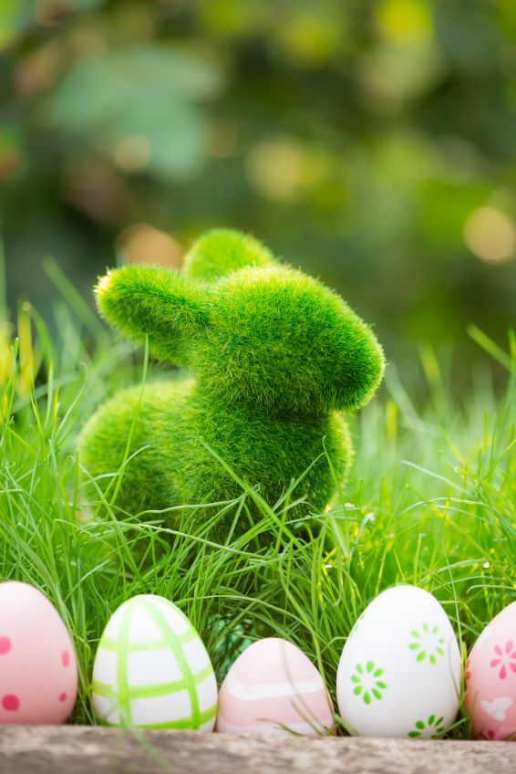Easter #moss #rabbit #bunny