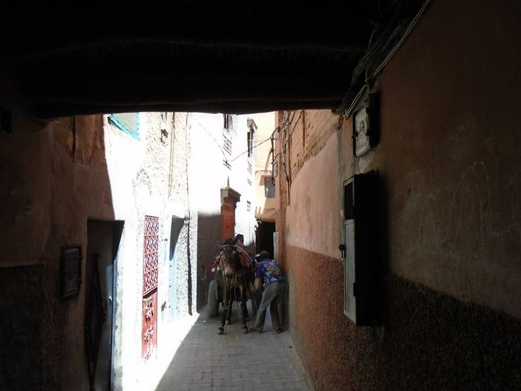 typical scene Marrakesh  is biblical in nature