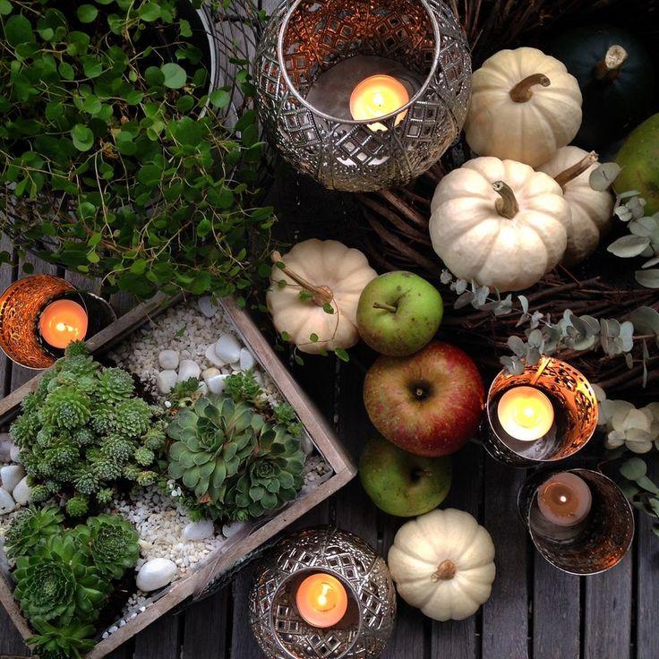 Herbststimmung #einrichtung #deko #dekoration #decoration #herbst #kürbis #zierkürbis #pumpkin Foto: House No.22