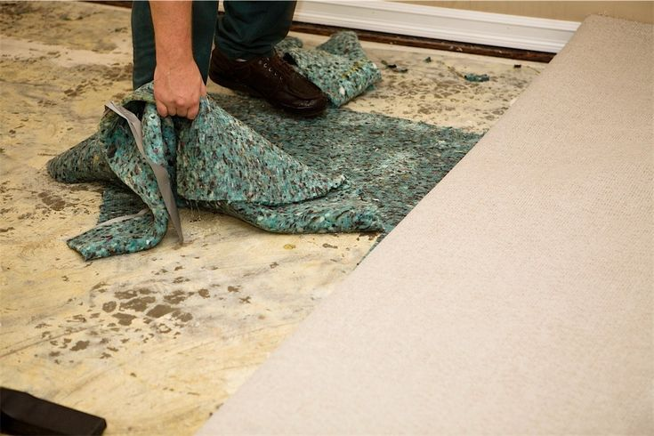 Getting rid of mildew smell in carpet home design