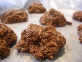 Low Carb No Bake Cookies   4 Tablespoons Coconut Oil Or Melted Unsalted Butter  ½ cups Natural Peanut Butter  6 Tablespoons Unsweetened Cocoa Powder  6 Tablespoons Splenda (granular) Or Another Granular Sweetener  ½ teaspoons Vanilla Extract  ½ cups Finely Shredded Unsweetened Coconut  ½ cups Pecans, Chopped