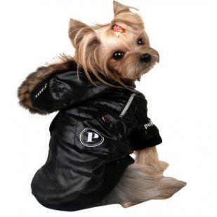 Ropa para perros   Cuidar de tu mascota es facilisimo.com