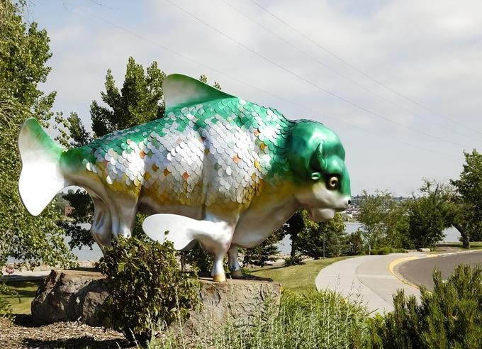 Buffalo Fish Statue: In Great Falls, Montana.