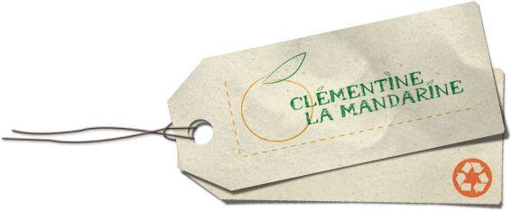 Tutoriels récup, Trucs et astuces pour bricoler écolo, Désencombrement, Boutique de créations récup, Ateliers récup' à Grenoble www.clementinelamandarine.com