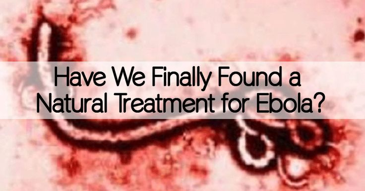 Share Tweet + 1 Mail More and more mentions of possible Ebola virus outbreaks are flooding news channels and littering headlines around the world. ...