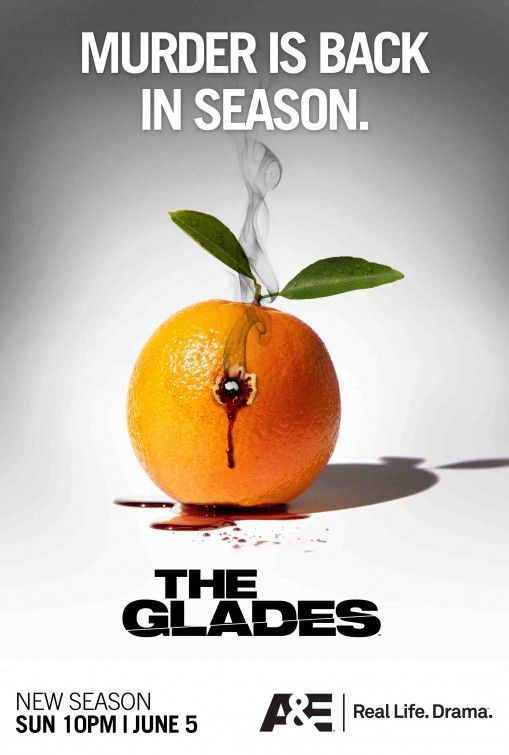 115 best THE GLADES images on Pinterest   The glades ...