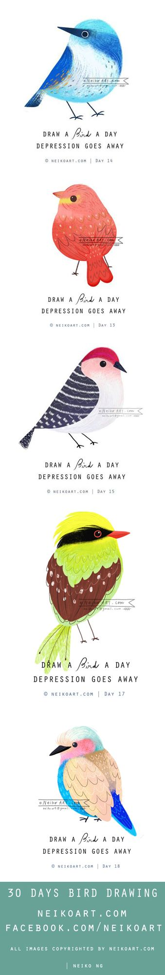 Draw a bird a day illustrated by Neiko Ng (via neikoart.com).