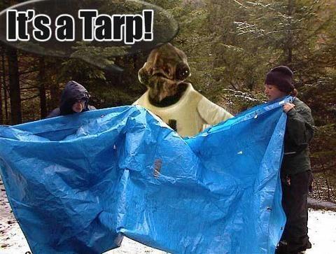 It's a tarp!!