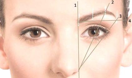 http://www.dieu-crea-la-femme.com/2012/11/15/les-regles-pour-des-sourcils-parfaits/ Pour une jolie forme et un regard jeune, la pointe du sourcil doit être plus haute que le début. Vérifiez en plaçant un crayon à l'horizontale qui part de la tête du sourcil. Ligne 4 sur l'image.
