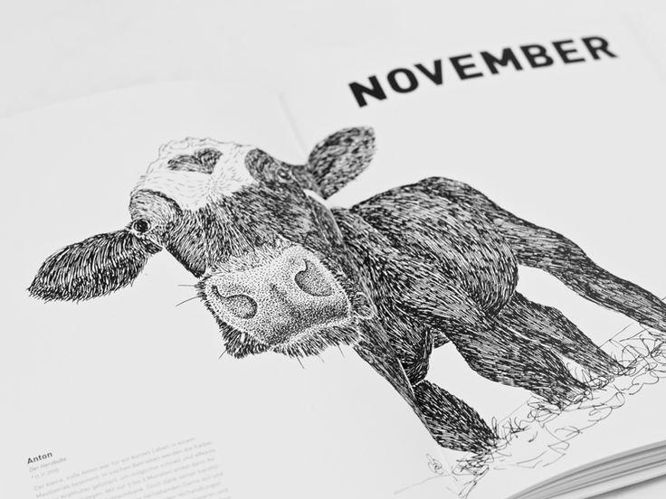 Ich liebe Kühe und fotografiere sie immer wieder und wieder. Und so gefällt mir auch dieser Kalender extrem gut :-) // Die Gestalterin Lena Wenz ist fasziniert von Kühen – und unterstützt mit ihrem »it's cowtime« Kalender einmal mehr das Kuhaltersheim auf Butjadingen. Kuhl! Sie schauen keck aus dem Bild heraus, kauen neckisch auf einem Halm oder liegen lasziv auf der Wiese: die porträtierten Kühe von Lena Wenz, die 2015 ihr Studium an der FH Bielefeld...