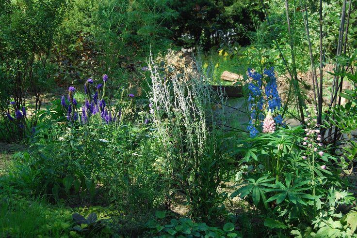 English Garden, ogród angielski ogród naturalistyczny copyrights anna skorupska
