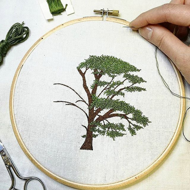 #cedre #cedar . . . . #foret #forest #arbre #greenlife #tree #nature #making #encours #inprogress #draw #dessin #handembroidery #embroidery #embroideryart #broderie #broderiemain #handmade #faitmain #brodeuse #stitching #embroidered #madeinfrance #delphil #tatoueusedetissu #modernembroidery #contemporaryembroidery #embroideryinstaguild #embroiderylove