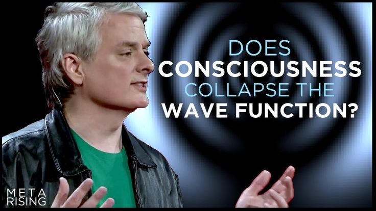 Does Consciousness Collapse the Wave Function?   David Chalmers Ph.D