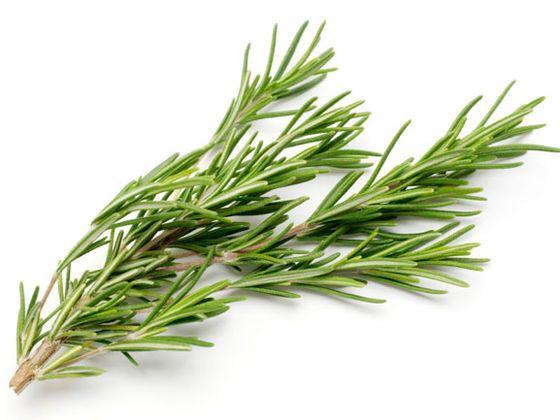 """Eredményem:""""Mesteri!"""" (11 ennyiből: 12! ) - Felismered a gyógy- és fűszernövényeket?"""