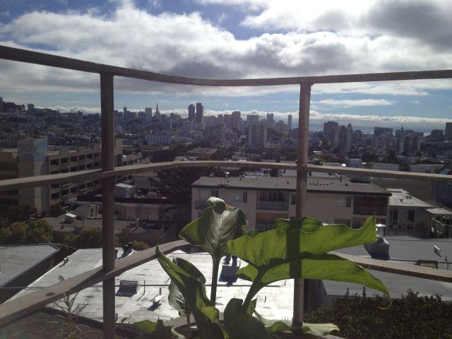 my daily inspiration … via anza vista neighborhood of san francisco