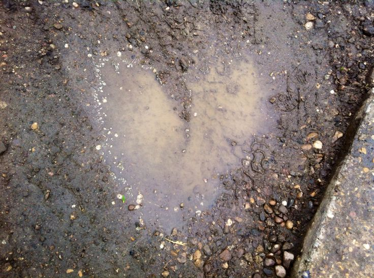 Puddle heart
