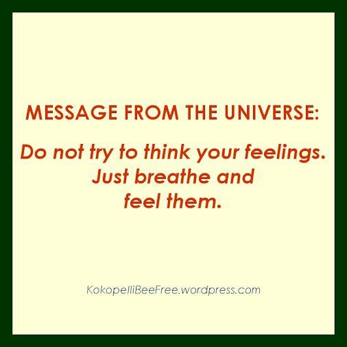 MESSAGE FROM THE UNIVERSE Feel | #KokopelliBeeFree #KBFMessagesFromTheUniverse #Feel