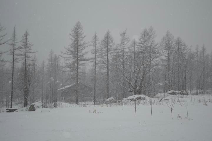 Snowing in Macugnaga