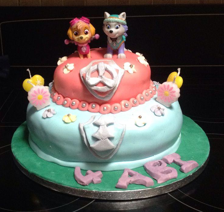Paw Patrol Skye and Everst Cake