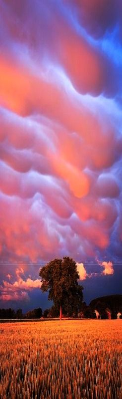 Mammatus by erictarrit // For premium canvas prints & posters check us out at www.palaceprints.com