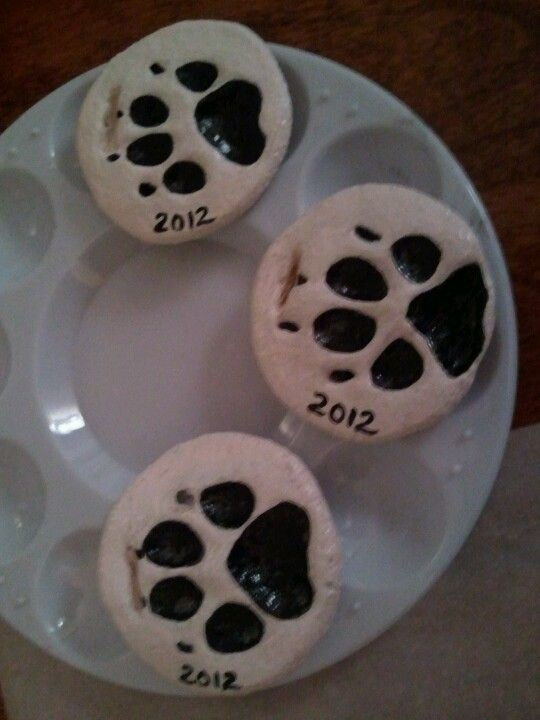 Salt dough pet paw prints ornaments I glued their photo on the other side & painted deluted white glue over to protect them. (basic salt dough recipe)