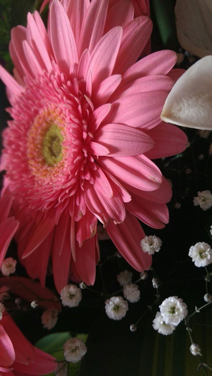 best color rosado images on pinterest pink pink pink pretty in