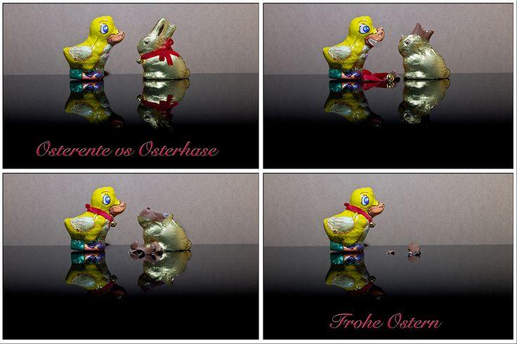 Osterente vs Osterhase http://fc-foto.de/27572524