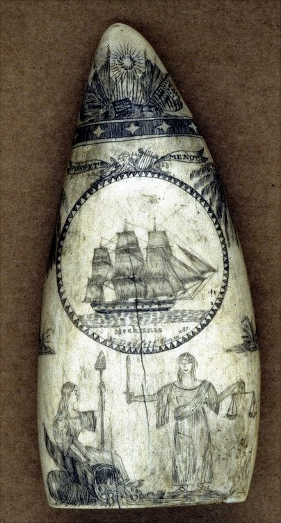 """queequegscoffin:  """"…a tooth from the so-called """"Mechanic"""" scrimshaw artist. Unknown until identified by Dr. Frank and other members of his research team, the artist was identified in that manner because the scrimshaw in question came from an 1834-38 voyage of the ship MECHANICof Newport, Rhode Island. Dr. Frank and his compatriots are confident that the artist is one Spencer Pratt of Bristol, Rhode Island who was the first mate on that particular ..."""