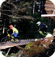 """Tutto il bike park è stato studiato per ricalcare fedelemente trail naturali, seguendo le curvature del terreno e recuperando una serie di vecchi sentieri, mulattiere in stato d'abbandono o disuso,  cercando così di proporre un """"Natural Bike Park"""".  In tutta la realizzazione non sono stati utilizzati mezzi meccanici, ma dove utili sono state inserite strutture in legno, quali  wall ride , drop, jump , etc"""