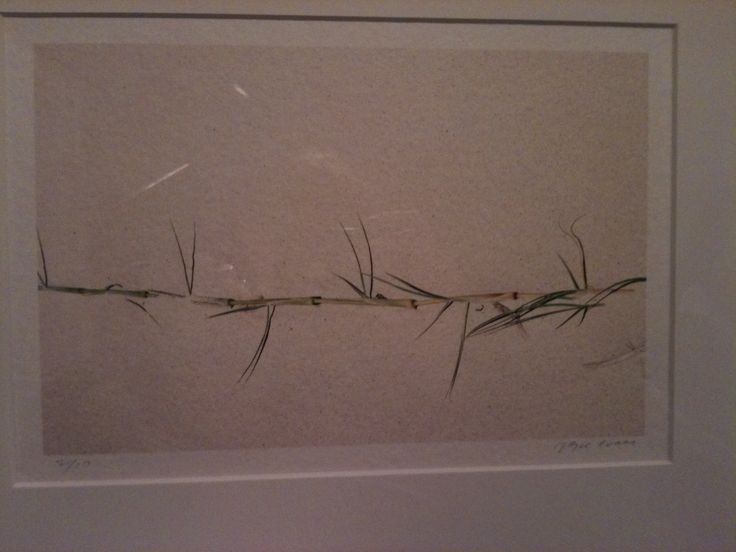 Joyce Evans (Born Australia 1929)  Sand Grass 2005, ink-jet print on mulberry paper, printed 2007