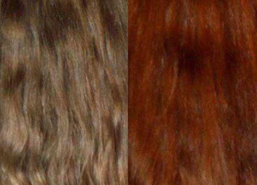 Teñir el cabello con extractos naturales es posible - Mejor con Salud