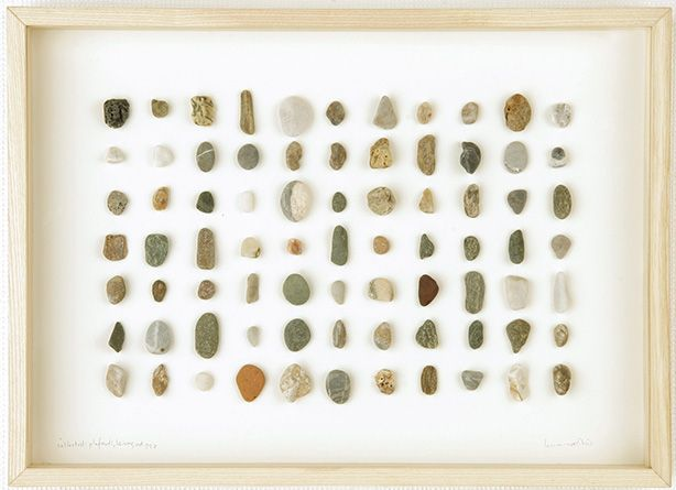 herman de vries - collected: plefouti, leros collected: plefouti, leros, 2005 mixed media mounted on paper (322 × 225 × 35 mm) Private collection