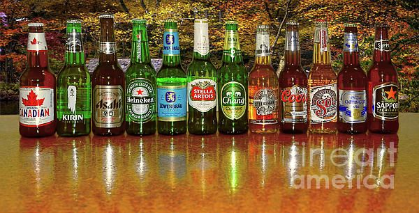 Do you like beer? Here are 12 different beers from around the world reflecting on a shiny surface with an autumn tone background. World Beers by Kaye Menner Photography. Quality Prints Cards Products at: https://kaye-menner.pixels.com/featured/world-beers-by-kaye-menner-kaye-menner.html