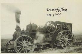 Dampfpflug