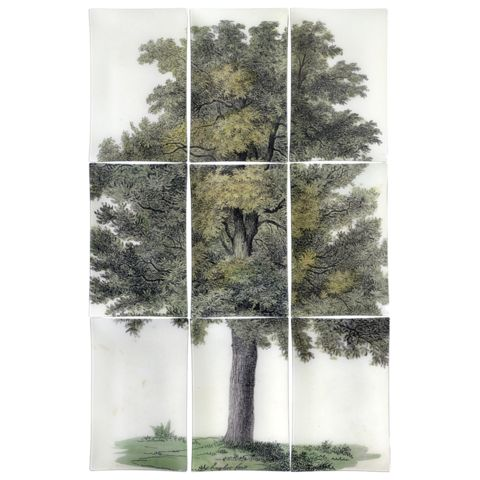 John Derian Company Inc — Oak Tree (9 Pieces)