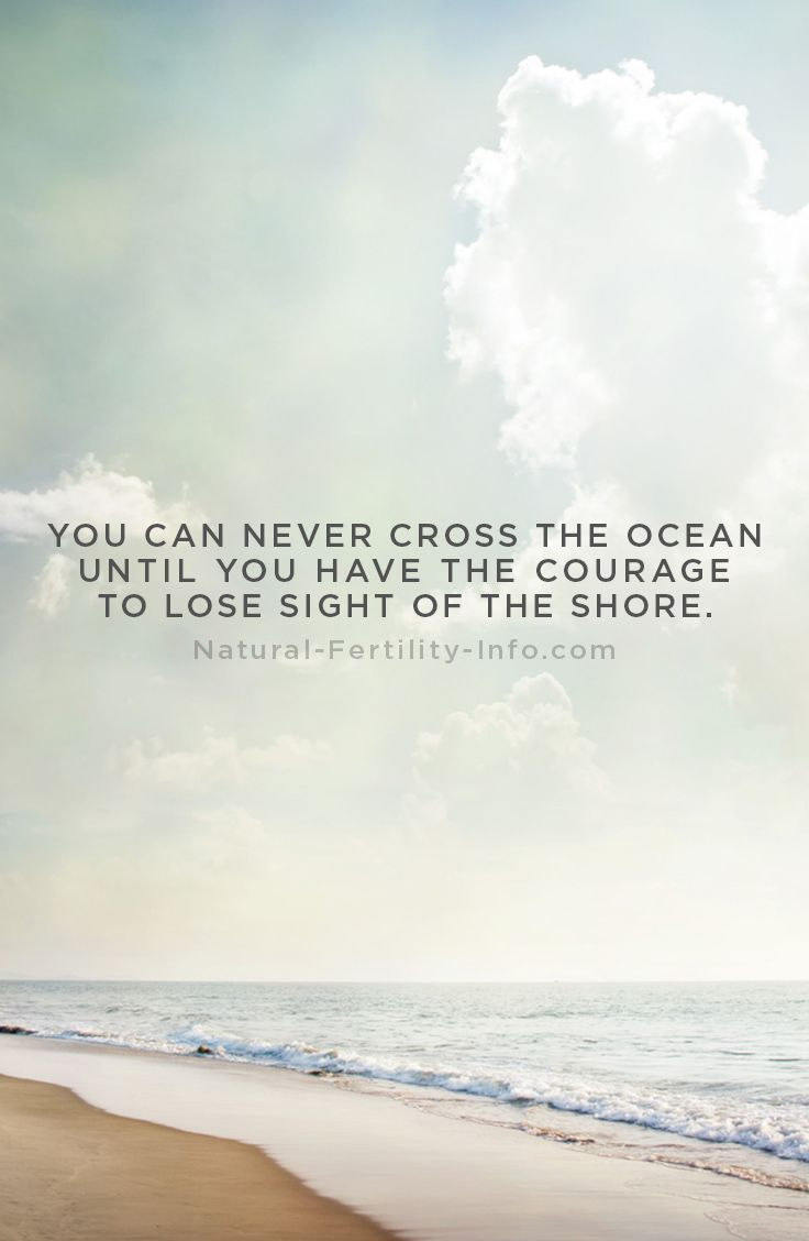 best christopher columbus quotes christopher you can never cross the ocean until you have the courage to lose sight of the shore christopher columbus